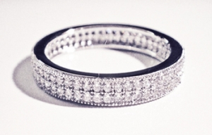 Diamondess SS PP, Double Row CZ Pave Band Ring